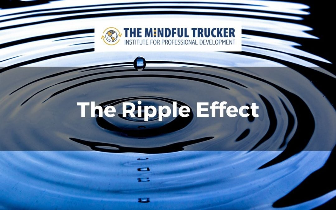 Ripple Effect Blog Feature